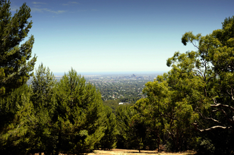 Spectacular views overlooking Adelaide city framed by native Australian bushland.
